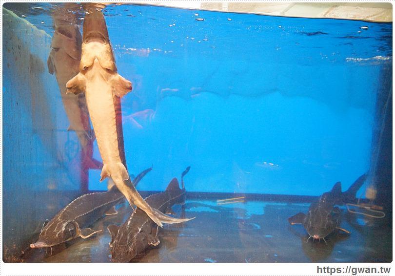 20170122203339 69 - 熱血採訪 | 城裡城外巫山烤魚 — 麻辣酸甜怪味烤魚 | 台灣也能吃到道地四川活魚料理