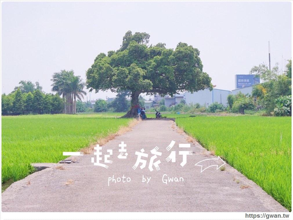 [台中景點●南屯區] 台中迷你版伯朗大道 — 真的不是在台東,這裡也有金城武樹!!