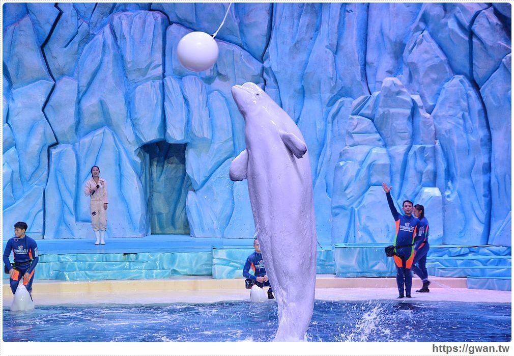 [中國旅遊●珠海] 橫琴長隆海洋王國 白鯨劇場 — 內容精彩無冷場的白鯨表演 | 幸運兒可以跟白鯨親親