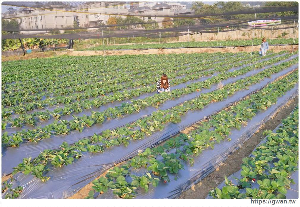 20180222002227 95 - 台中也能採草莓囉,就在潭子草莓世界!