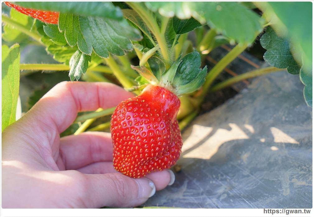 20180222002236 22 - 台中也能採草莓囉,就在潭子草莓世界!