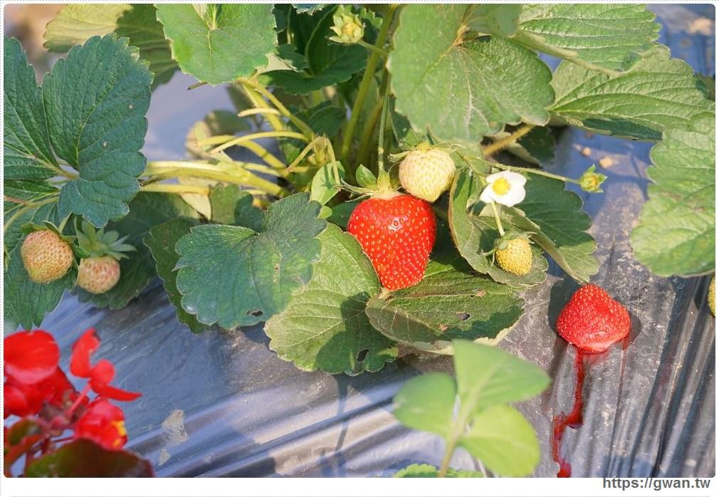 20180222002241 75 - 台中也能採草莓囉,就在潭子草莓世界!