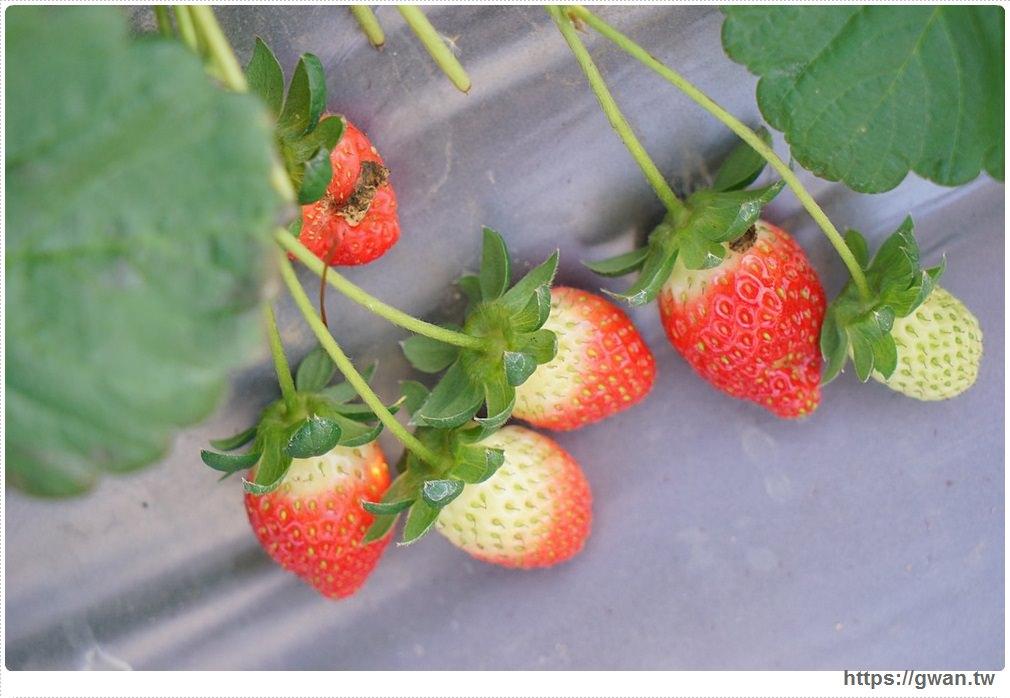 20180222002245 33 - 台中也能採草莓囉,就在潭子草莓世界!