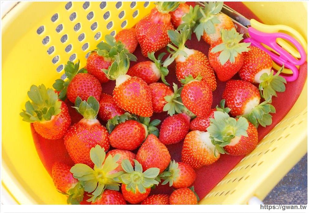 20180222002249 43 - 台中也能採草莓囉,就在潭子草莓世界!