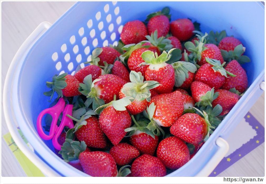 20180222002300 28 - 台中也能採草莓囉,就在潭子草莓世界!