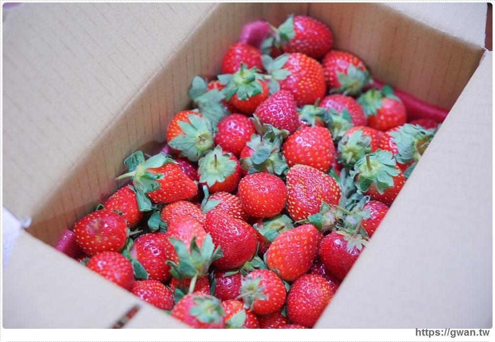 20180222002335 54 - 台中也能採草莓囉,就在潭子草莓世界!