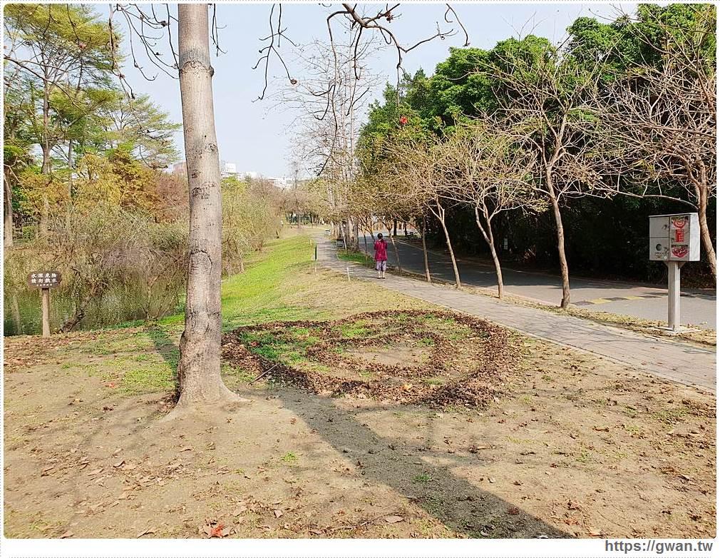台南巴克禮公園雙心木棉花消失了!!想去拍照的不要白跑一趟囉~