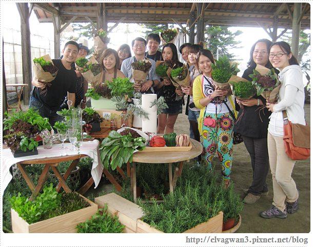 彰化閃爍西南角-番挖農場-蔬菜花園-22
