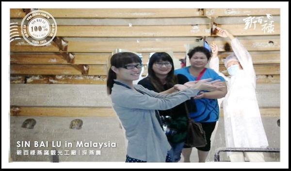 台南-安平-新百祿燕窩觀光工廠-燕窩DIY-37-26915_n-1