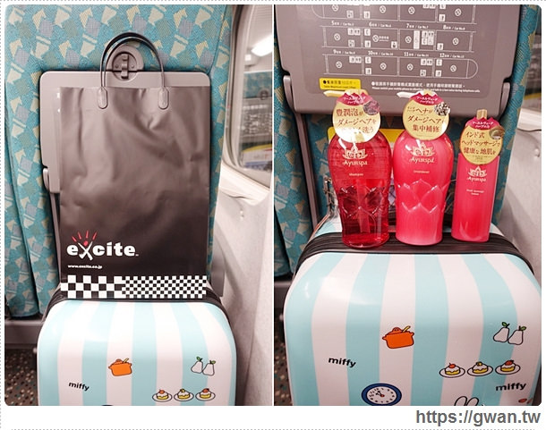 國內旅遊行李箱,3天2夜行李箱,20吋行李箱,便宜好用行李箱,行李箱推薦,EasyFlyer,易飛翔,Miffy,FriDay購物網,愛享客,時間軸-27